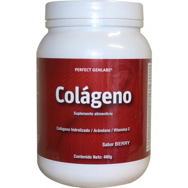 PerfectGenLabs-Colageno-480Gr