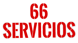 66 servicios