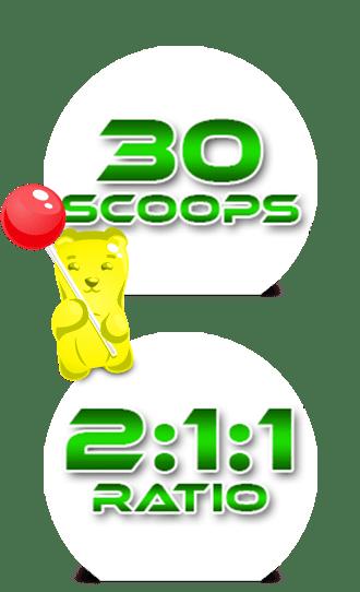 BCAAs en proporcion 2:1:1 en 30 servicios